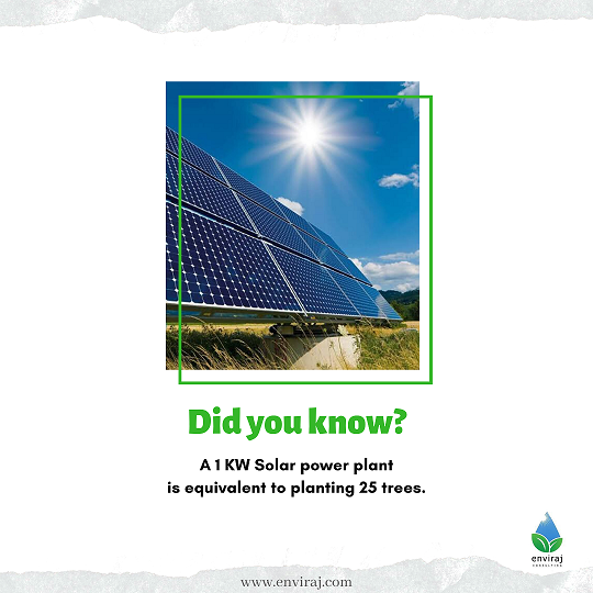 1KW Solar power plant is equivalent to planting 25 trees